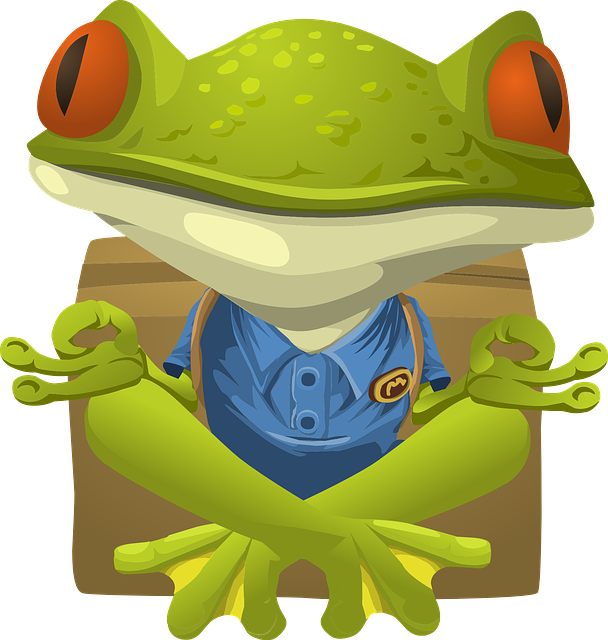 frog 576528 640
